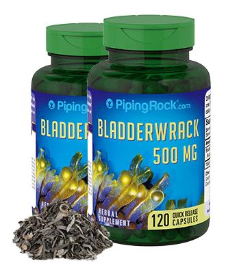 Bladder Wrack