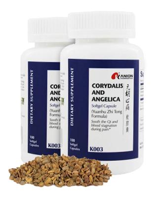 Corydalis