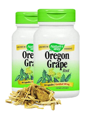 Oregon Grape