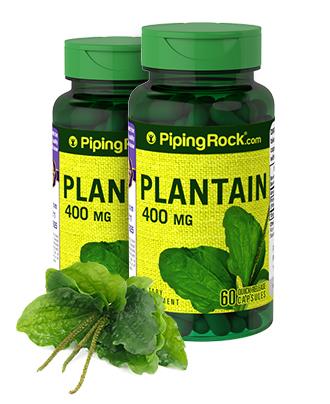 Plantain (Leaf)