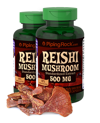 Reishi Mushroom
