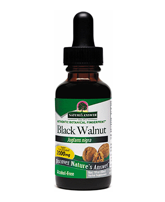 Black Walnut Hulls