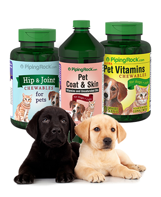 Pet Products