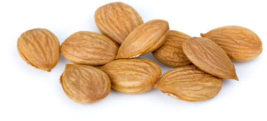 Косточки абрикоса 12 oz (340 g) Пакетик
