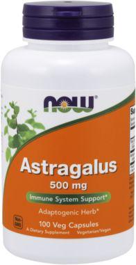 Astragalus 500 mg, 500 mg, 100 Capsules