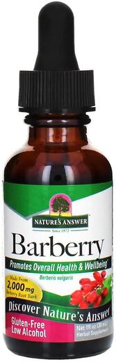 Extrato Líquido de Berberis, 2000 mg, 1 fl oz (30 mL) Frasco conta-gotas