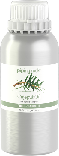 Cajeput Pure Essential Oil (GC/MS Tested), 16 fl oz Canister