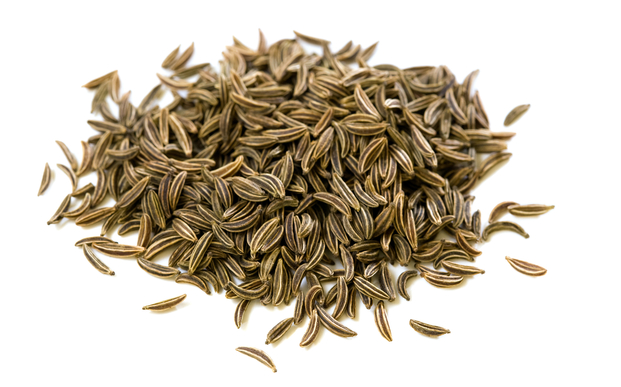 Caraway Seed (Organic), 1 lb Bag