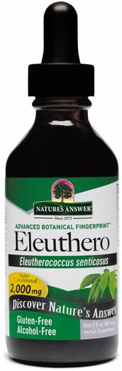 Płynny ekstrakt z korzenia eluterokoka kolczastego bez alkoholu 2 fl oz (59 mL) Butelka z zakraplaczem