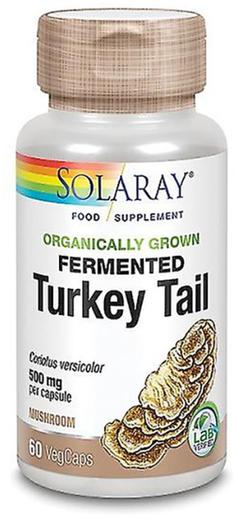 Organic Fermented Turkey Tail 500mg 60 Capsules