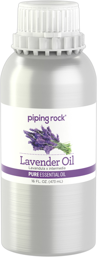 Lavender Pure Essential Oil (GC/MS Tested) 16 fl oz (473 mL) Canister