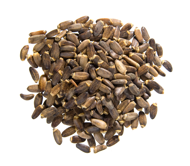 Milk Thistle Seeds Whole (Organic), 1 lb (453.6 g)