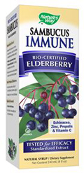 Buy Elderberry Sambucus Immune Syrup 8 fl oz (237 mL) Bottle