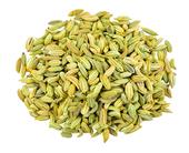 Fennel Seed Whole (Organic), 1 lb (453.6 g)
