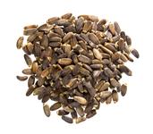 Mariendistelsaat, ganz (Bio) 1 lb (453.6 g) Beutel