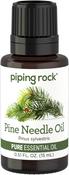Piniennadel, reines ätherisches Öl (GC/MS Getestet) 1/2 fl oz (15 mL) Tropfflasche