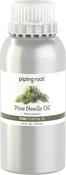 Piniennadel, reines ätherisches Öl (GC/MS Getestet) 16 fl oz (473 mL) Kanister