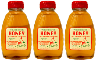100% miód nieprzetworzony z dzikich kwiatów 1 lb (454 g) Butelki
