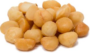 鹹味烤製澳洲胡桃堅果 1 lb (454 g) 袋子