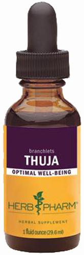 Extrait liquide de thuja 1 fl oz (30 mL) Compte-gouttes en verre