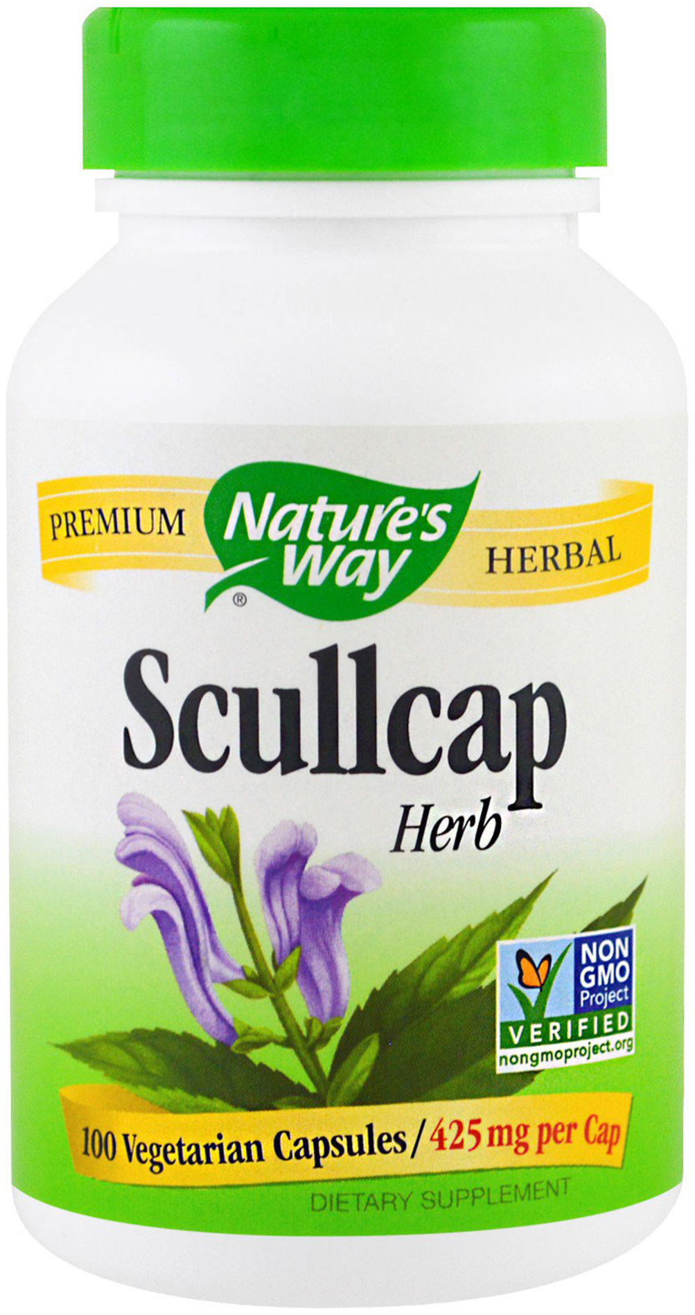 Scullcap Scullcap new picture