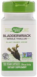 Bladderwrack 580 mg 100 Vegetarian Capsules