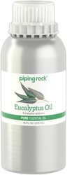 Huile essentielle pure à l'eucalyptus (GC/MS Testé) 16 fl oz (473 mL) Bidon