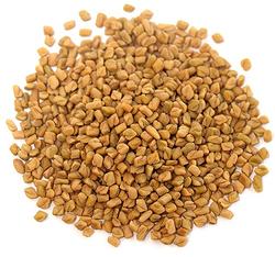 Organic Fenugreek Seeds Whole 1 lb (454 g) Bag x 2 Bags