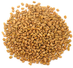 Organic Fenugreek Seeds Whole 1 lb (454 g) Bag x 2 Bags