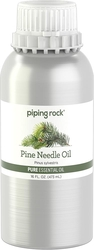 Pine Needle Pure Essential Oil (GC/MS Tested), 16 fl oz (473 mL) Canister