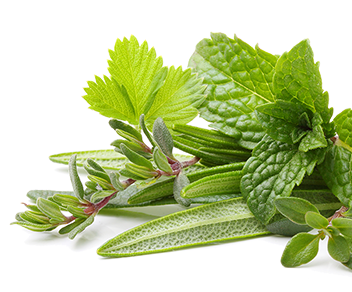 Διατροφικά συμπληρώματα από βότανα (Όλα)